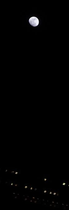 P4042826.jpg