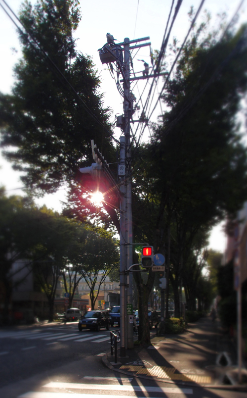 P8048970.jpg