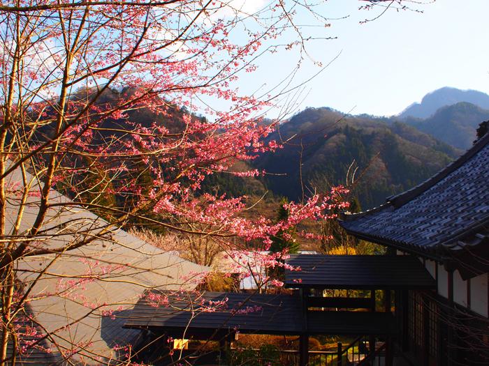 chourakuji15.jpg