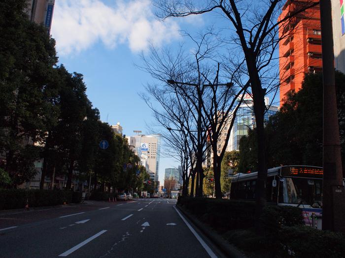 kawasaki6.jpg